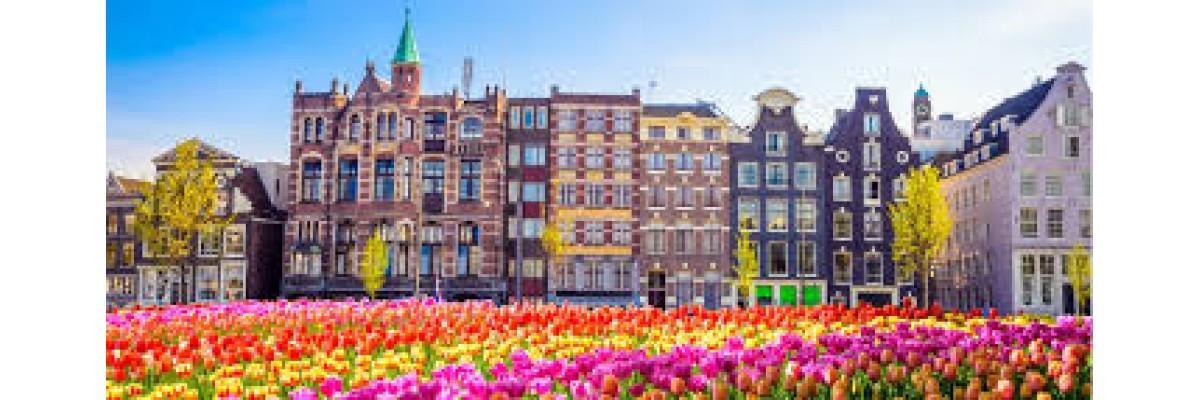 Evde Hollandaca Öğrenmek İçin Tavsiyeler